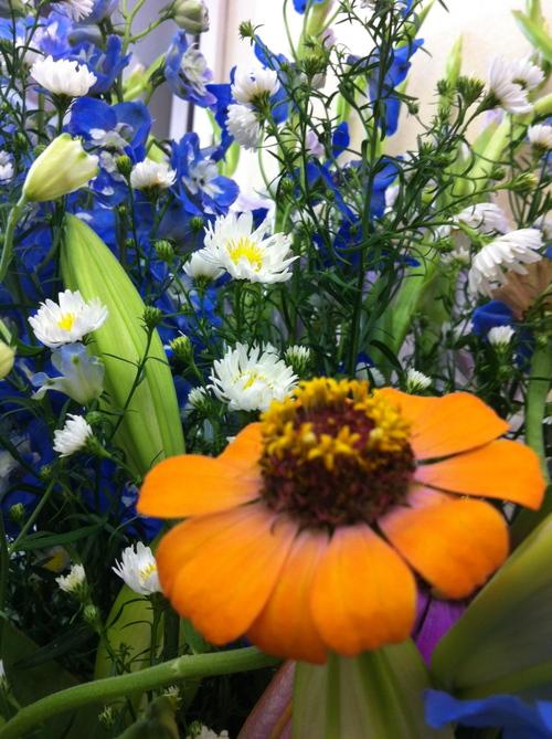 今週のお花とセール情報_a0200423_20313247.jpg