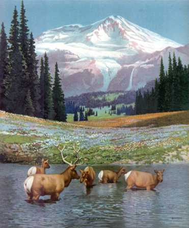 Climb ev\'ry mountain   Sound of Music ♪_c0229423_91884.jpg