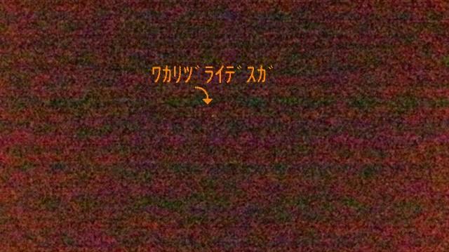 d0178136_184452.jpg