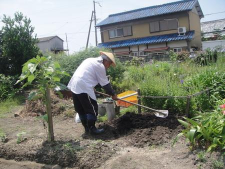 花壇リニューアルの重労働_c0108460_22143381.jpg