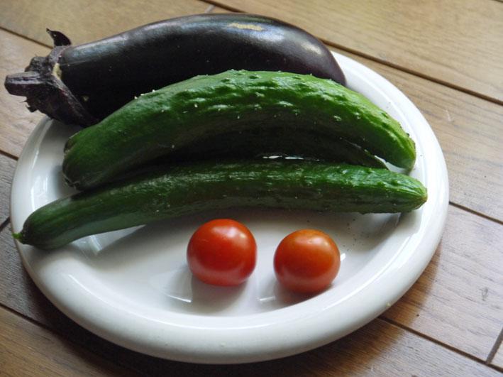 キュウリ、ナス、ミニトマトを初収穫(12・6・24~26)_c0014967_19211212.jpg