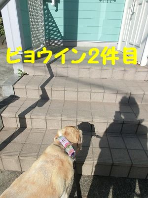 e0222588_1861881.jpg
