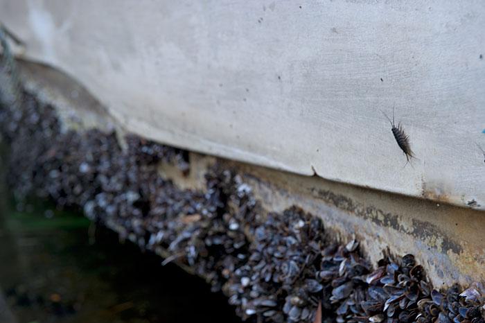 東京湾岸景-81 神奈川県 横浜市 京浜運河_f0215695_10253973.jpg