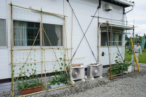 福島県内の仮設住宅を廻って来ました(最終日)_d0004728_6543072.jpg
