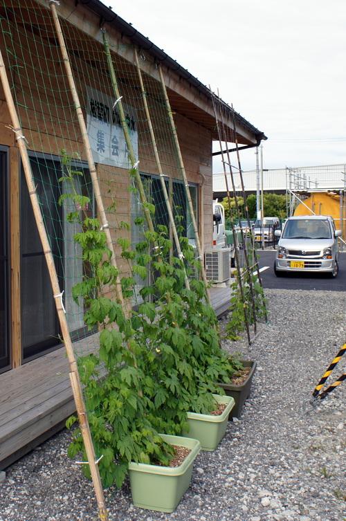 福島県内の仮設住宅を廻って来ました(最終日)_d0004728_6581849.jpg
