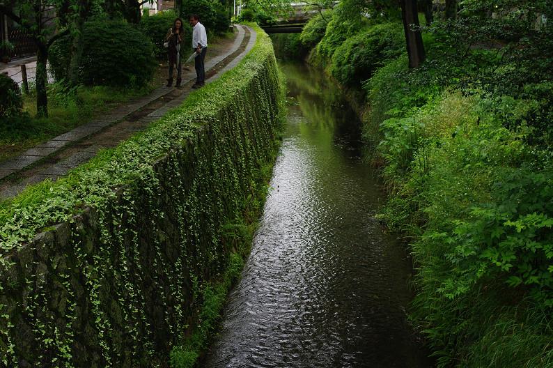雨の哲学の道..._f0152550_211566.jpg