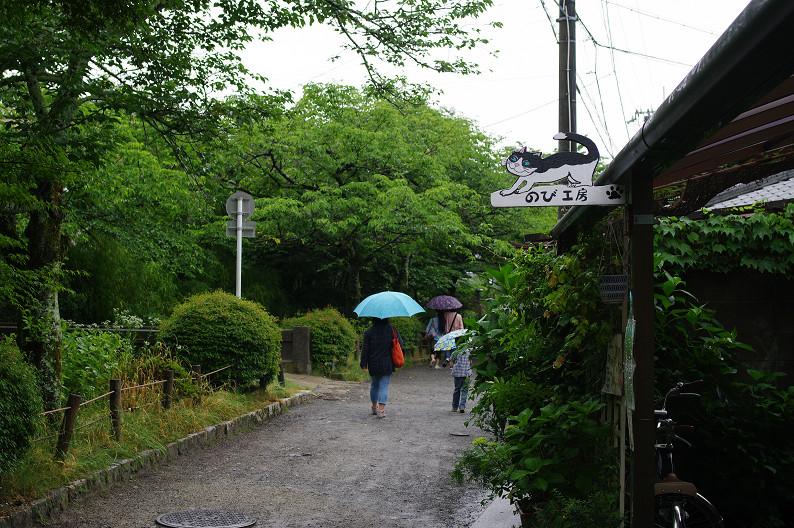 雨の哲学の道..._f0152550_2122132.jpg