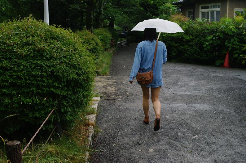 雨の哲学の道..._f0152550_2123364.jpg