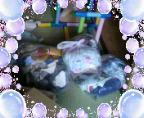 b0003855_16531493.jpg