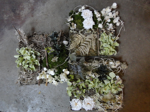flower._d0162257_15441665.jpg