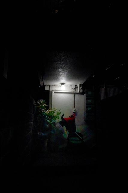 日没前後の四ッ谷界隈を歩いて、、、_a0031363_16485220.jpg