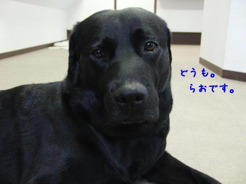 f0189870_1614418.jpg