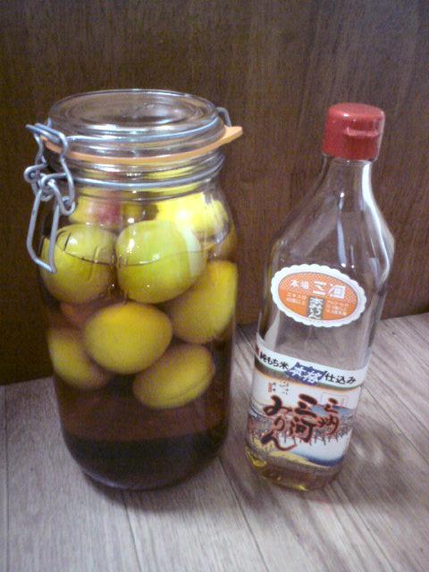 マクロビ的梅酒&手作り日焼け止め_e0075673_044839.jpg