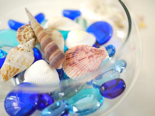 涼しげなガラスと貝殻と…!キラキラの夏アイテム&夏雑貨で心地よい空間を!