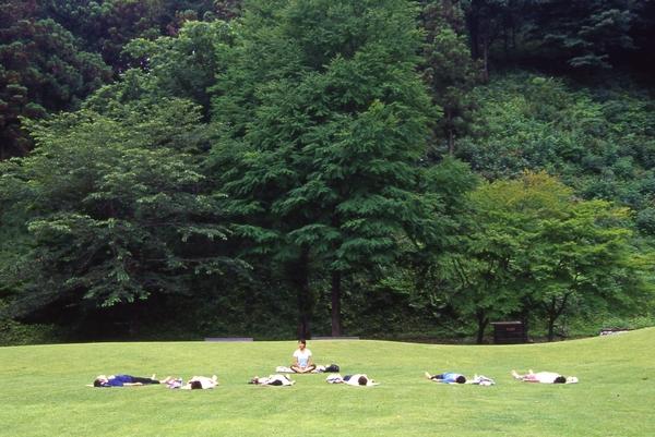 森林セラピー with Yoga_e0231387_21182589.jpg