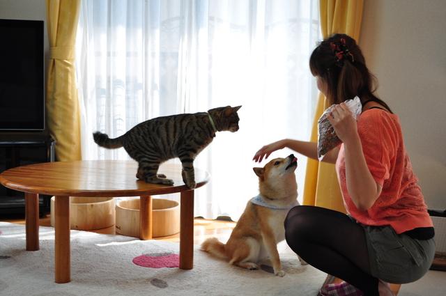 食いしんぼう姉弟_a0126590_014289.jpg