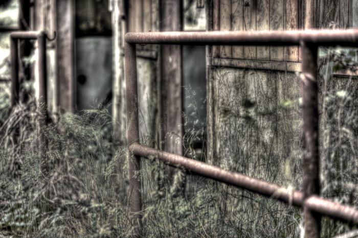 廃墟の存在感 in 廃牧場_e0135098_20352559.jpg
