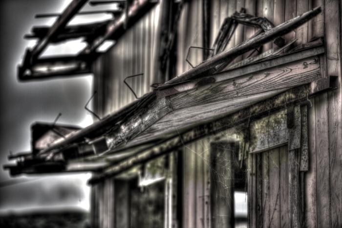 廃墟の存在感 in 廃牧場_e0135098_20352758.jpg