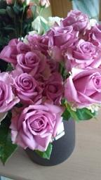 紫の花_f0054809_1258717.jpg