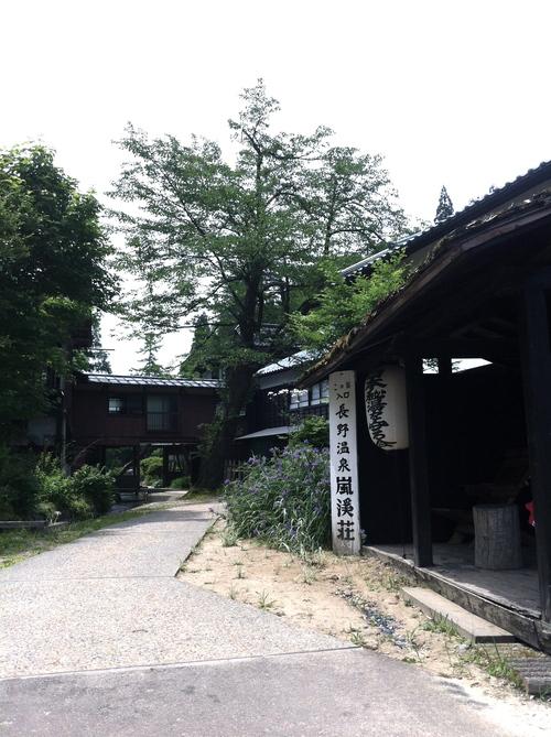 越後の桃源郷へ_a0126418_22352255.jpg