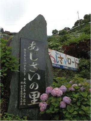 散歩部活動報告 「紫陽花のある風景 2012」_e0142619_2272912.jpg