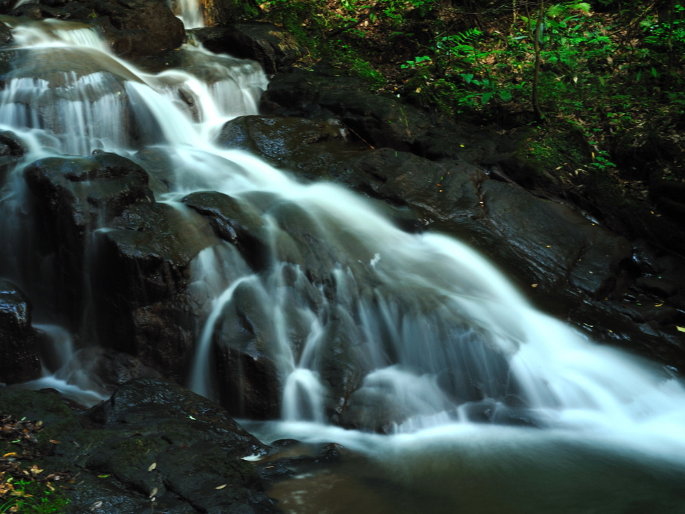 石川 『 水 と 緑 』 その2_c0220824_16522063.jpg