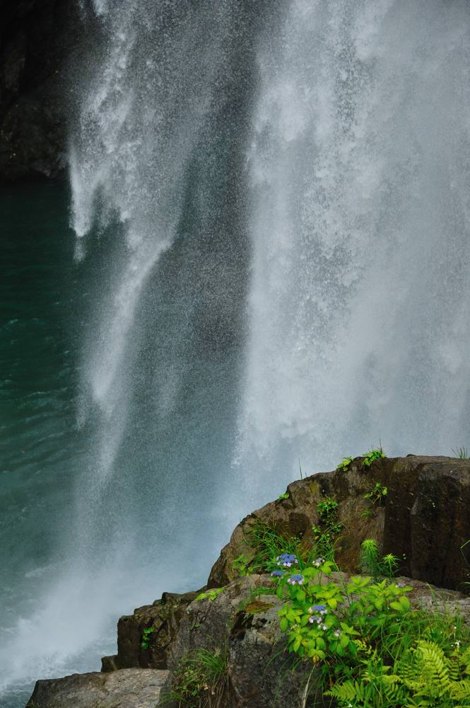 石川 『 水 と 緑 』 その2_c0220824_1652580.jpg