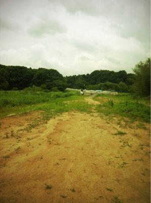 道なき道を_a0209330_17554824.jpg