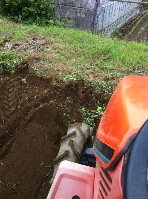今朝は、A氏&Tさん 蚕豆とエンドウ豆の跡 土を耕します じゃがいもや玉ねぎの跡も_c0222448_16171735.jpg