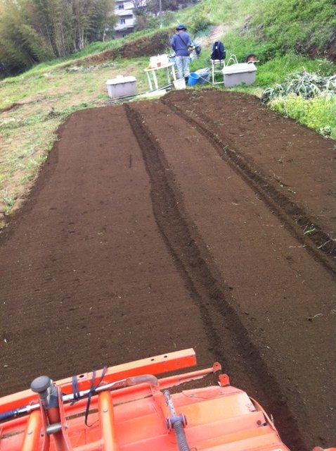 今朝は、A氏&Tさん 蚕豆とエンドウ豆の跡 土を耕します じゃがいもや玉ねぎの跡も_c0222448_1617295.jpg