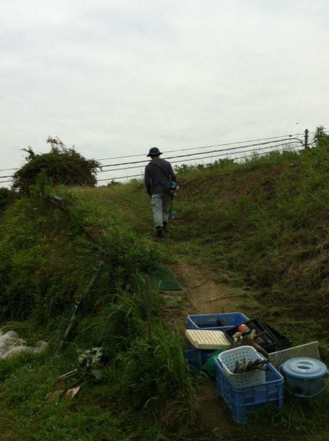 今朝は、A氏&Tさん 蚕豆とエンドウ豆の跡 土を耕します じゃがいもや玉ねぎの跡も_c0222448_1655067.jpg