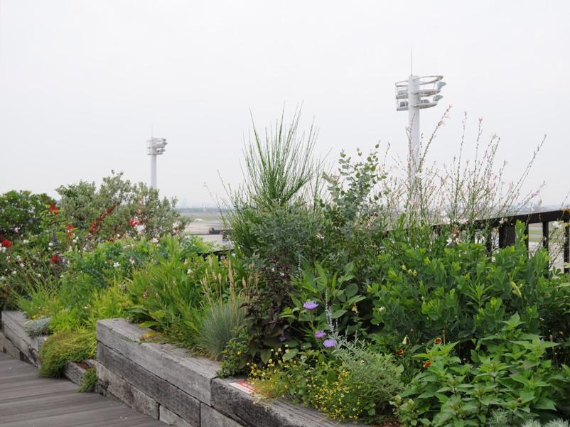怒涛の関西行脚2012 Pt.1 ^^  伊丹空港展望デッキ _f0191870_10183393.jpg