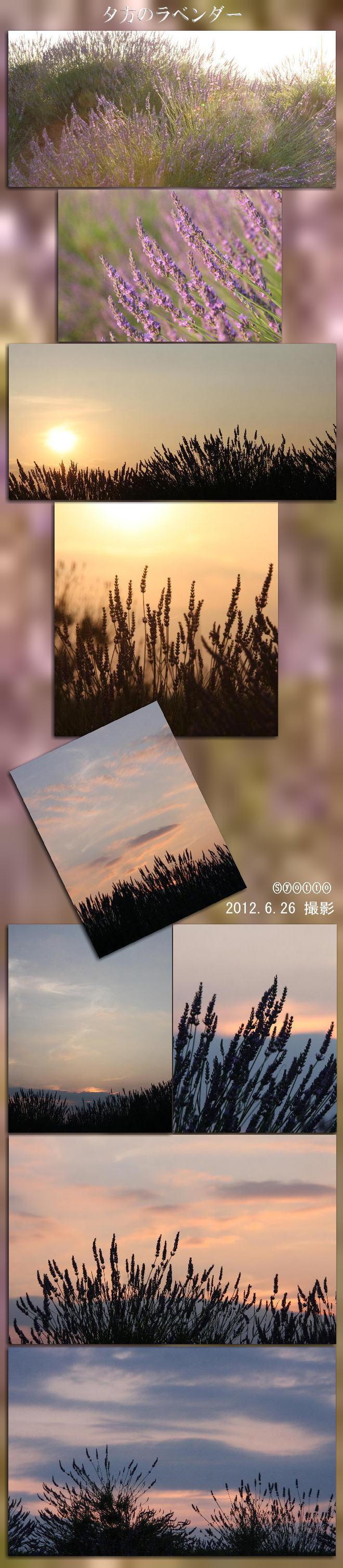f0164592_724015.jpg