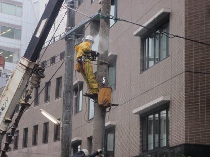 電柱をどうする?_e0077899_22494972.jpg