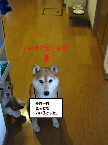 b0225620_034281.jpg