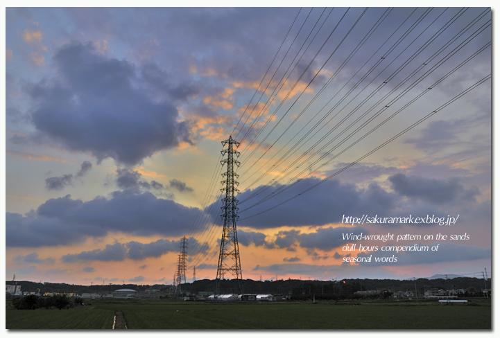 6月の田園夕景。_f0235723_20345250.jpg