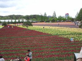山陰への旅☆★☆_e0176128_10283831.jpg