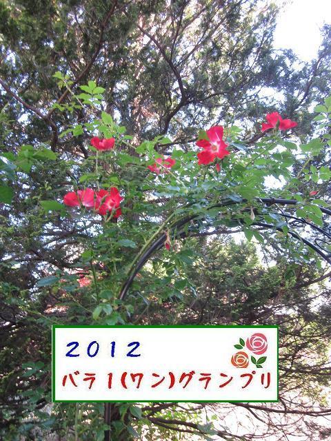 c0234938_16234437.jpg