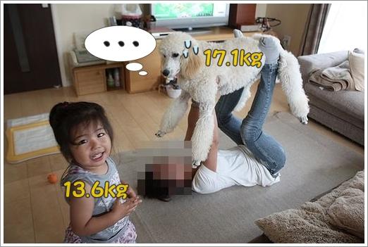 b0111376_12391587.jpg
