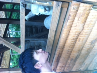 日本昭和村へ行ってきました!_d0178587_1253885.jpg