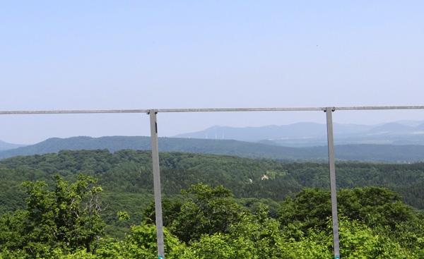 七滝のキセキレイ、日景温泉の茶々丸君など♪_a0136293_13573952.jpg