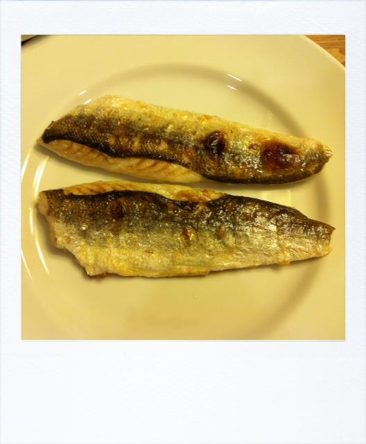 どこまでも魚、SUNSEA \'FISH\' レストラン_f0170995_1140393.jpg