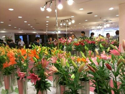 花の展示・検討会_d0062298_12462093.jpg