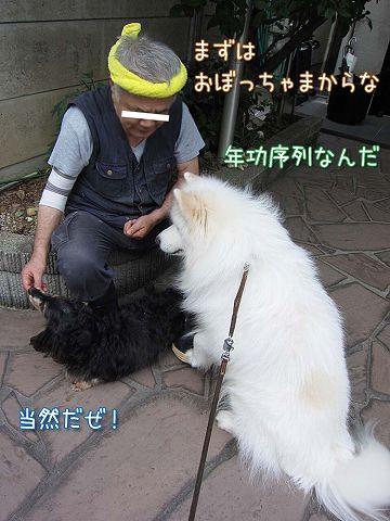 真昼の決闘_c0062832_8544543.jpg