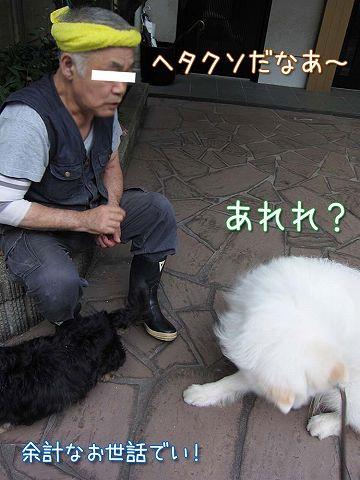 真昼の決闘_c0062832_8545981.jpg