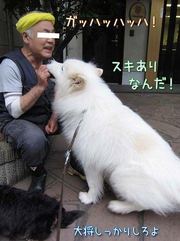 真昼の決闘_c0062832_8551569.jpg