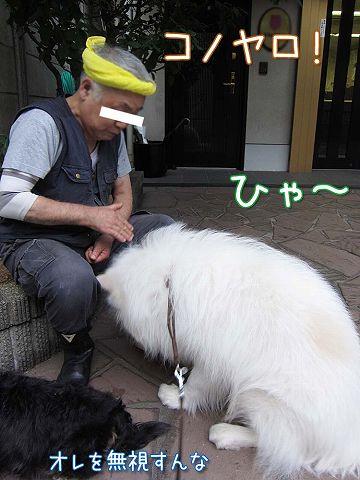 真昼の決闘_c0062832_8552314.jpg