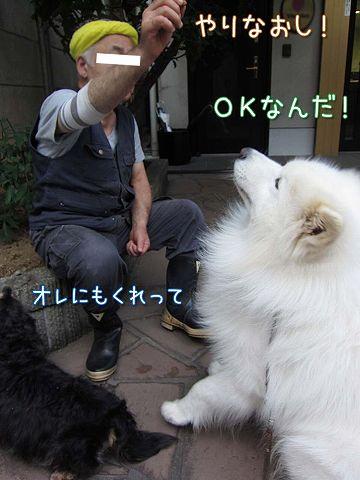 真昼の決闘_c0062832_8552853.jpg