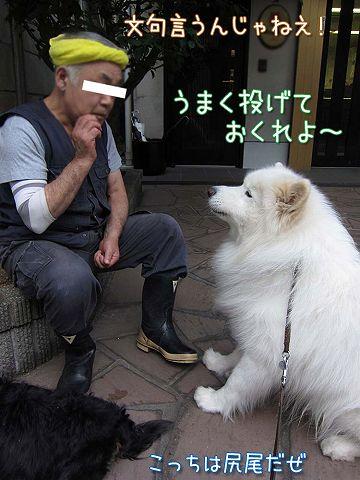 真昼の決闘_c0062832_855494.jpg