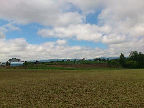 美瑛の丘の写真_b0106766_14382656.jpg